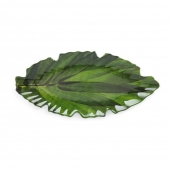 Q Squared Zen Melamine Small Leaf Platter Set Of 4