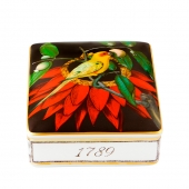 Amazonia Card Box Dark