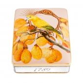 Amazonia Card Box Lighter