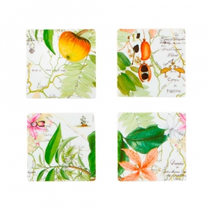 Amazonia Set of 4 Coasters