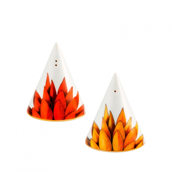 Amazonia Salt and Pepper Set