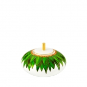 Vista Alegre Amazonia Sugar Box Green