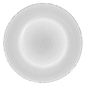 Limelight Dinner Plate Set Of 2